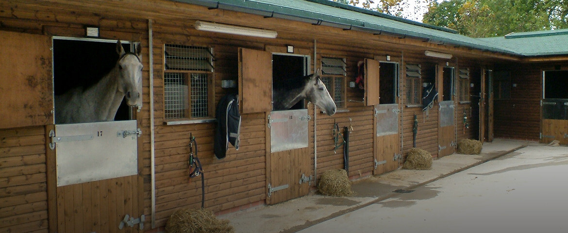 Equestrian Timber Buildings