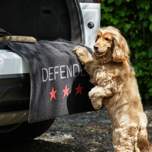Defender image #1