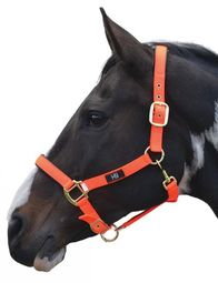 Hy Grand Prix Head Collar Cob Size
