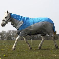 Gallop Turnout/Fly rug