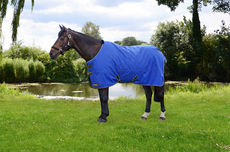 StormX Original 100 Turnout Rug