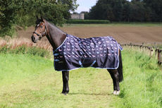 StormX Liza Dog 0 Turnout Rug