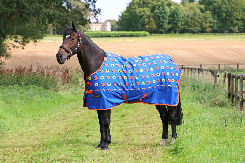 StormX Original Simon the Sheep 50 Turnout Rug image #1