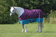 StormX Patrick the Pheasant 100 Turnout Rug