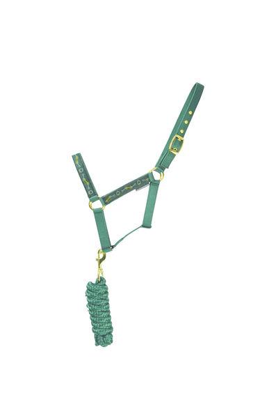 HyEQUESTRIAN Elegant Stirrup & Bit Head Collar & Lead Rope image #1