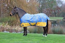 StormX Original Chico the Cheetah 0 Turnout Rug