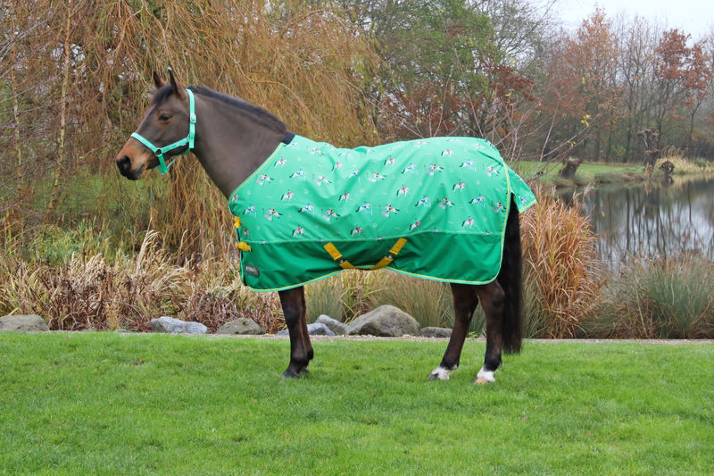 StormX Original Competition Ready 50 Turnout Rug image #1