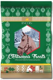 Lincoln Christmas Horse Bix