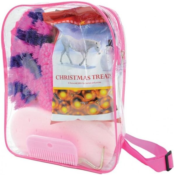 Lincoln Treat Bag - Pink