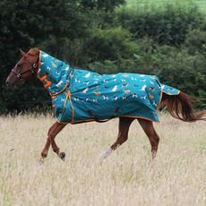 Dogs Print 200g Combo Turnout Rug
