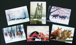 Caroline Cook Christmas Cards Pack of 12