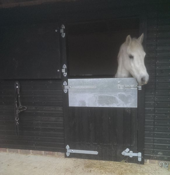 Customised Painted Stable Doors image #4