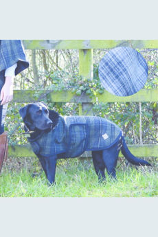 Claire Tweed and Faux-Fur Dog Coat