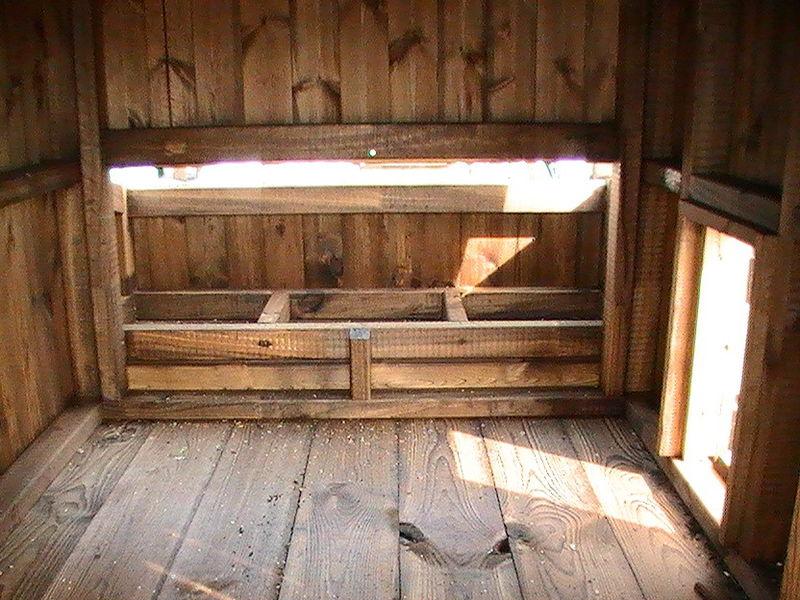 Chicken Coop image #3