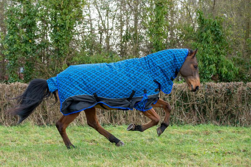 Galloping View of Rug