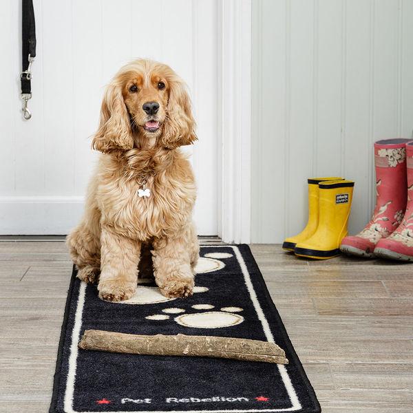 Dog Runner image #1
