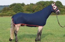 Honsie - Horse Onsies