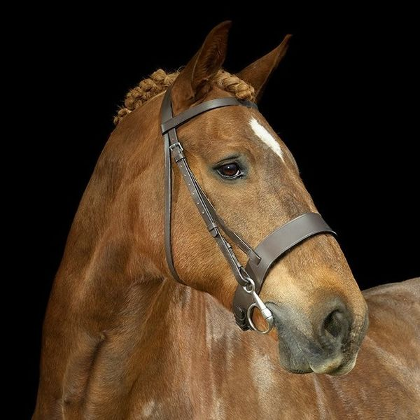Leather Bridle - Hunter Style