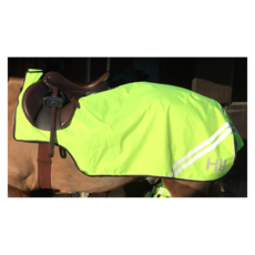 Yellow HyViz Reflector Exercise Sheet