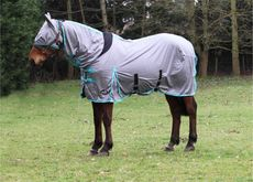 JUMP ALL IN ONE FLY RUG