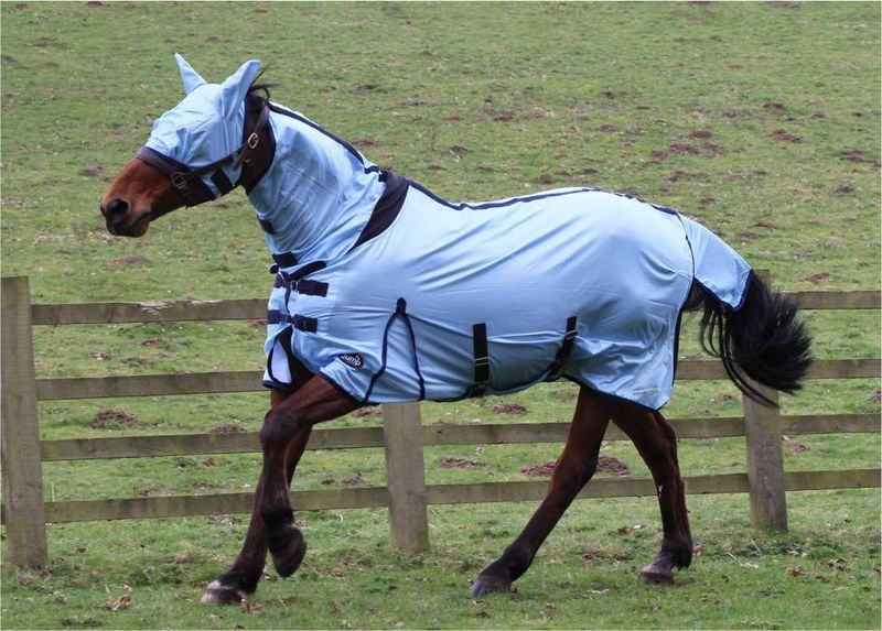 JUMP ALL IN ONE FLY RUG image #2