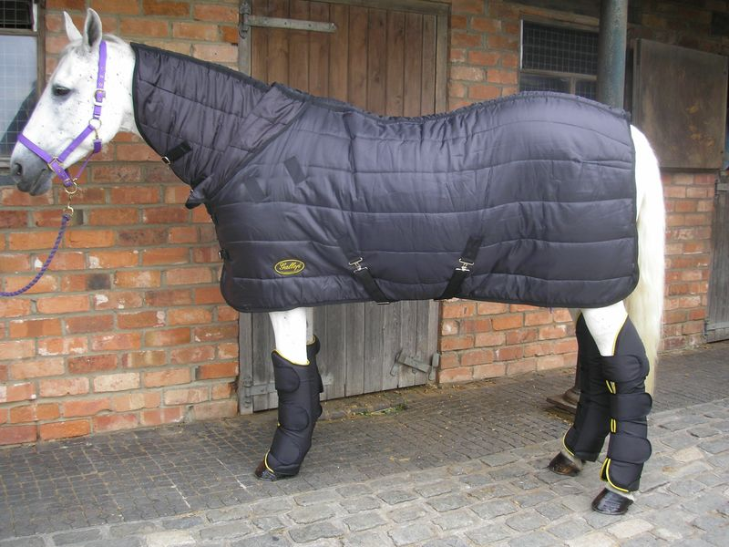 Gallop Maverick Combo Rug with Travel Boots