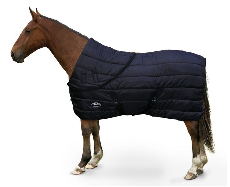 Gallop Maverick Combo Rug with Folded Neck