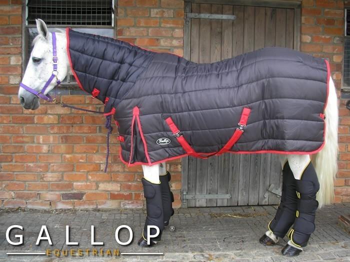 Maverick 300 Combo Stable Rug image #1