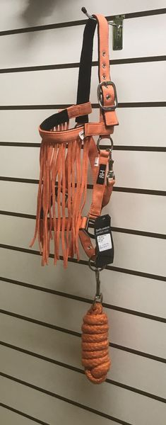 Orange Head Collar, Lead Rop & Fly Veil Set