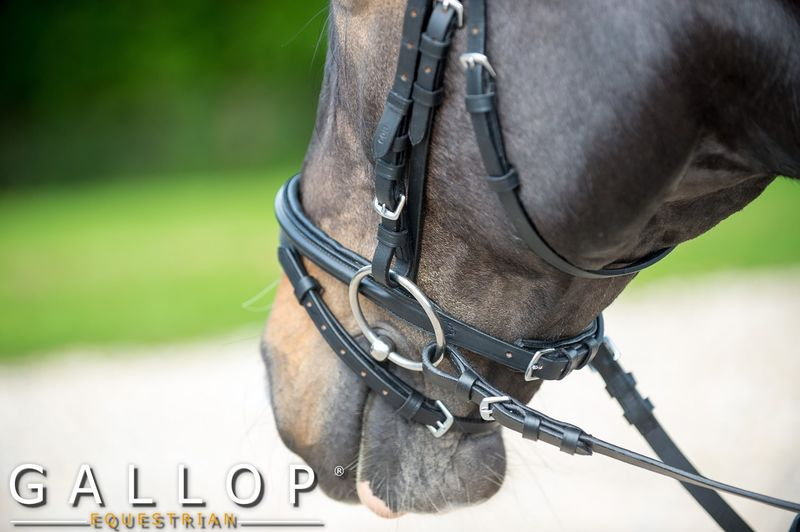 Padded Bridle and Rubber Reins image #2