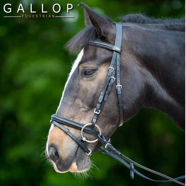 Padded Bridle and Rubber Reins image #1