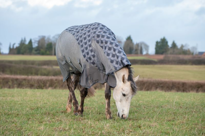 Patterned Turnout Fly Rug image #2