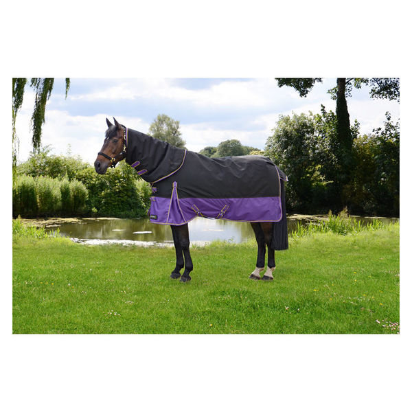 StormX Original 200 Turnout Rug with Detachable Neck Cover image #1