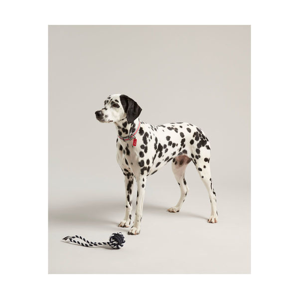 Joules Rubber and Rope Dog Toy image #1