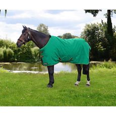 Storm X Original O Turnout Rug