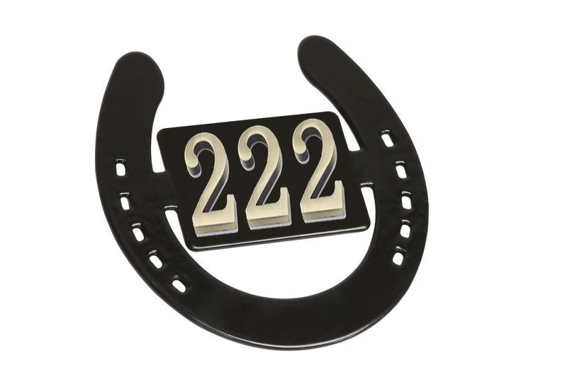 Horseshoe Nameplate image #2