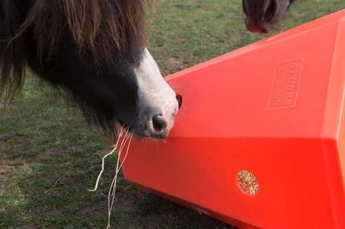Hay Roller - Pony