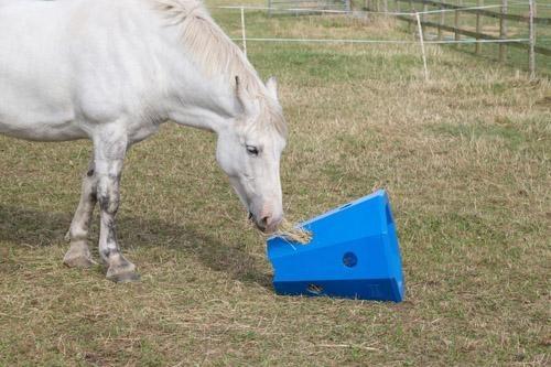 Hay Roller - Horse