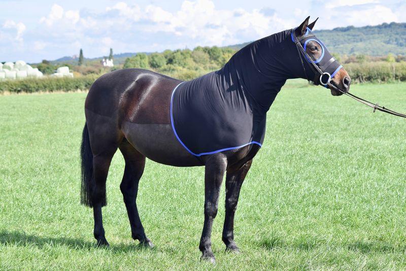 Black - Large