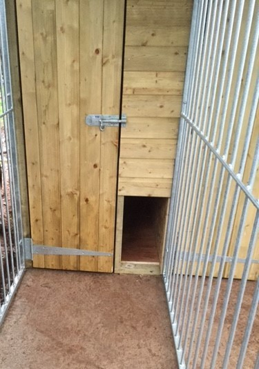 Triple Dog Kennel image #2