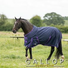 Trojan Lightweight Turnout Rug